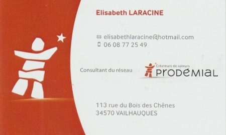 Elisabeth LARACINE - Conseillere patrimoniale - Réseau PROMEDIAL